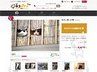 ネコジマン|猫画像,猫写真の投稿サイト