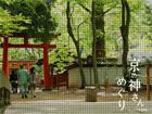 京都おすすめ神社 - 縁結び・ご利益・恋愛 - コトログ京都神社